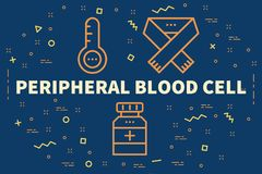 Conceptual business illustration with the words peripheral blood. Cell Stock Photo