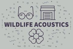 Conceptual business illustration with the words wildlife acousti. Cs Royalty Free Stock Photography