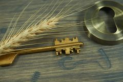 Golden key and ear of wheat on an old wooden table. Conceptual close-up of a vintage golden key and ear of wheat on an old wooden table as symbol for access Stock Photography