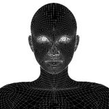 Conceptual 3D wireframe human female or woman face or head Royalty Free Stock Photo
