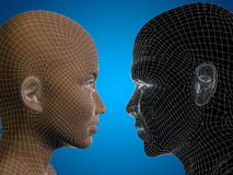Conceptual 3D wireframe or mesh human male and female head Royalty Free Stock Image