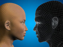 Conceptual 3D wireframe or mesh human male and female head Royalty Free Stock Images