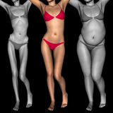 Conceptual 3D woman as fat vs fit anorexic. Conceptual 3D woman or girl as fat, overweight vs fit healthy, skinny underweight anorexic Royalty Free Stock Photo