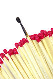 Conceptual Difference. One burnt match stick stands out from the rest for a conceptual difference Stock Images