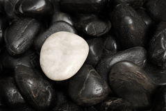 Conceptual Difference. A white stone surrounded by other black stones for a conceptual difference Stock Photo
