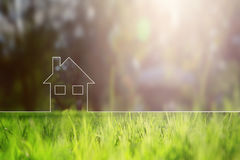 Conceptual eco home healthy living. Copy space background with blurred sunny meadow texture Royalty Free Stock Photos