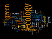 Conceptual ecology word cloud isolated Royalty Free Stock Photo