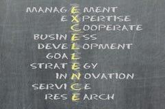 Conceptual EXCELLENCE acronym written on black chalkboard blackboard. Management, expert, development, strategy, research, service, goal vector illustration