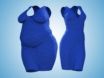 Overweight obese female dress outfit vs slim fit healthy body. Conceptual fat overweight obese female dress outfit vs slim fit healthy body after weight loss or Stock Image