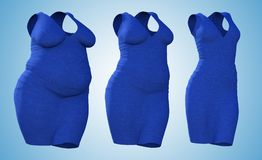 Overweight female dress outfit vs slim fit healthy body. Conceptual fat overweight obese female dress outfit vs slim fit healthy body after weight loss or diet royalty free illustration