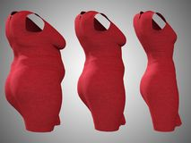 Overweight obese female dress outfit vs slim fit healthy body. Conceptual fat overweight obese female dress outfit vs slim fit healthy body after weight loss or Royalty Free Stock Images