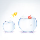 Conceptual Fish Temptation Stock Images
