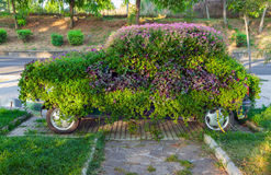 Conceptual flower decoration of small old car Stock Photos