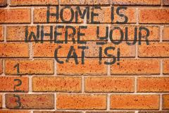 Conceptual hand writing showing Home Is Where Your Cat Is. Business photo showcasing Kitten lovers feline protection. Cute animals royalty free stock photo