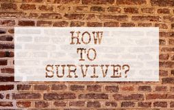 Conceptual hand writing showing How To Survive. Business photo showcasing Recommendations to have a safe adventure. Nature trip Brick Wall art like Graffiti royalty free stock photography