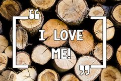 Conceptual hand writing showing I Love Me. Business photo text To have affection good feelings for oneself selfacceptance Wooden. Background vintage wood wild stock photography