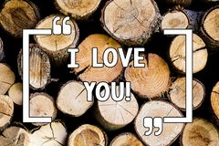 Conceptual hand writing showing I Love You. Business photo text Expressing roanalysistic feelings for someone Positive. Emotion Wooden background vintage wood royalty free stock photos