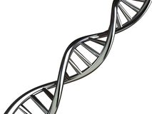Conceptual Illustration of DNA Royalty Free Stock Photo