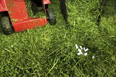 Conceptual image for hay fever. Green grass. Mower machine. And white pills on a ground stock image