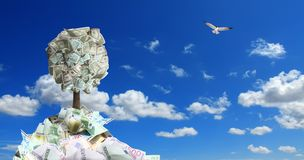 Conceptual image of money tree in money pile over sunny blue sky. With flying bird royalty free stock images