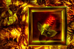 Conceptual image with spiral lamp Royalty Free Stock Image