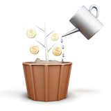 Conceptual image of a tree with coins is watered from a watering Royalty Free Stock Photo