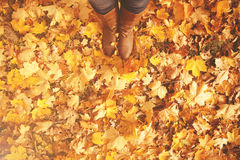 Conceptual legs in boots on the autumn leaves. Feet shoes walkin. Conceptual image of legs in boots on the autumn leaves. Feet shoes walking in nature Royalty Free Stock Photography