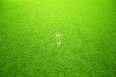Conceptual light bulb on green grass background Royalty Free Stock Photography