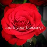 Conceptual red rose macro. Conceptual macro image with fresh bright red rose in bloom and white text on rose. Dark background Royalty Free Stock Photo