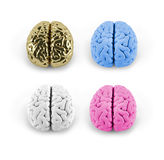 Conceptual model of brain. Model of the brain of different colors, 3D model, 3D illustration Stock Photo