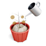 Conceptual money tree with watering. Royalty Free Stock Images