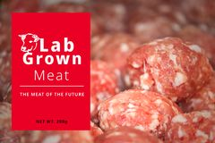 Conceptual Photo of Artificial Lab grown meat, Cultured meat. Technology royalty free stock photos
