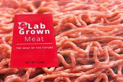 Conceptual Photo of Artificial Lab grown meat, Cultured meat. Technology stock photography