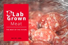 Conceptual Photo of Artificial Lab grown meat, Cultured meat. Concept royalty free stock images