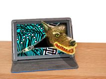 Big bad wolf cyber computer attack malware internet danger. Conceptual photo of a big bad wolf rearing its ugly head through computer screen depicting internet royalty free stock images