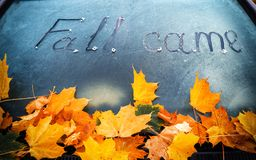 Autumn came Stock Images