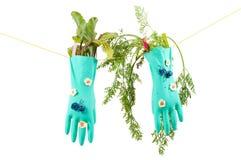 Conceptual photo with gloves Stock Photos