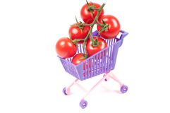 Conceptual photo with miniature shopping-cart Royalty Free Stock Photos