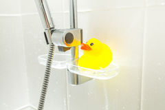 Conceptual photo of rubber duck Royalty Free Stock Image
