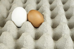 Conceptual photo of two eggs together Stock Photos