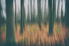 A conceptual photo using slow shutter speed of trees in a forest showing green and orange leaves with a strong vintage filter Royalty Free Stock Photo