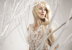 Conceptual picture of an attractive woman Royalty Free Stock Image