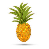 Conceptual polygonal pineapple. Abstract vector Royalty Free Stock Image