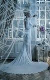 Conceptual portrait of an elegant lady wrapped with a spider`s w. Conceptual portrait of an elegant woman wrapped with a spider`s web Royalty Free Stock Photos