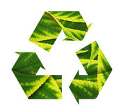 Conceptual Recycling Sign With Images Of Leave Royalty Free Stock Photo