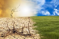 Conceptual scene, climate change. Conceptual scene: metamorphosis of our planet, transition from a green environment to the hostile and arid climate due to royalty free stock photography