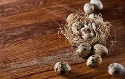 Conceptual still-life with quail eggs in hay nest over dark wooden background, close up, selective focus. Conceptual still-life with fresh raw spotted quail eggs stock photo