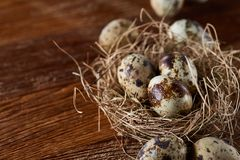 Conceptual still-life with quail eggs in hay nest over dark wooden background, close up, selective focus. Conceptual still-life with fresh raw spotted quail eggs stock photos