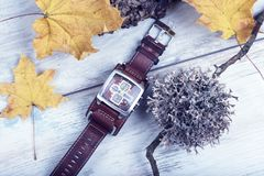 Conceptual Time Yellow Leaves Autumn Year Watch Lichen Hour Zone Cork Leather Strap. Conceptual Time Yellow Leaves Autumn Concept Calendar Date Design Year Watch Stock Photo