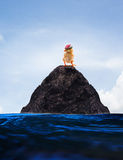 Conceptual unreal of baby chick on lonely island use for multipu Stock Photography
